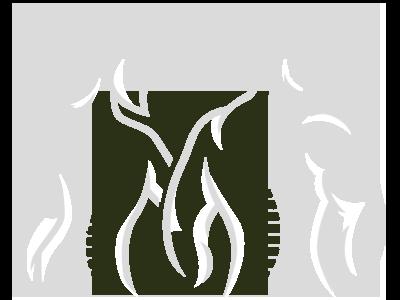 Chiropractic Redmond WA Spine Graphics